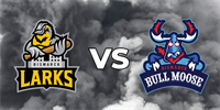 Larks vs. Bull Moose _logo